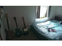 Double room in lovely Mile End houseshare
