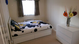 Double room to rent in Sutton