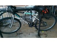 GT Palomar Mountain Bike (Mens)- Moving House Must Go