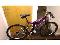 Mountain Ladies Bike with 26 wheel size