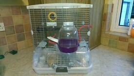 Clean budgie cage with accessories and seed.