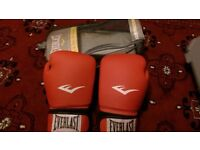 Everlast Boxing gloves new with original package