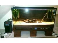 Aquarium Diversa 300L