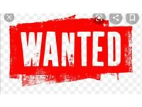 Wanted 14.2 and 15.2 mare or gelding