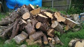 Fill your Carboot Logs Firewood or Garden Decor