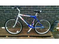 "Mountain bike 19""frame"
