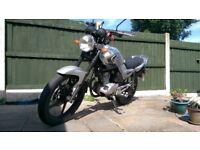 Yamaha YBR 125 - Daily Commuter / Learner Legal