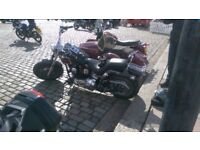 For sale my Harley softail custom fxstc very good condition