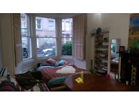 1 Large Double room in central flatshare