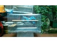 Degu, rat or chinchilla cage