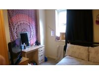 Double room to rent in Bass Buildings, Belfast City Centre 225pm