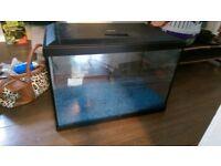 fish tank / superfish aqua expert 70