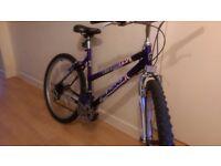 Magna Mountain Bike reduced