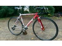 Triax Speed Road Bike