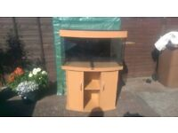 JUWEL VISION 180 LITRE TANK IN BEECH WITH CABINET