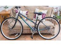 Ladies Bicycle - Raleigh Alana