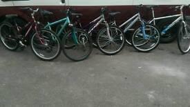Ladies bike s