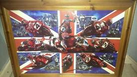 Carl Fogarty picture