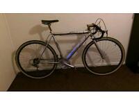 Teman race bike