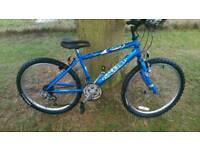 Raleigh boys mountain bike
