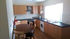 Beautiful 3 Bedroom House to Let in Portadown