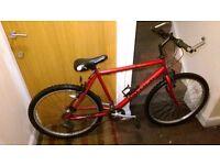 Raliegh mountain bike with 26 wheel size