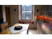 Double Bedroom in beautiful Flat available from mid August!