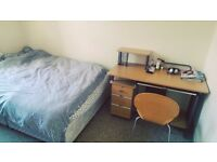 Centrally located single bedroom for student