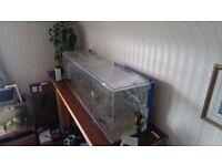Aquarium / Fish Tank (120L) 4ft