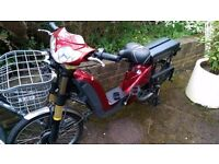 Electric laggage carrier bike