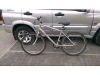 Raleigh tundra mens bike