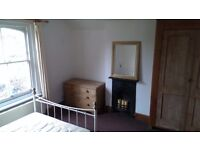 Lovely rooms in central Colchester