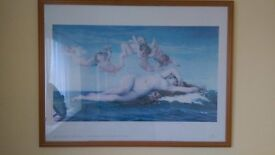Frames picture - The birth of Venus