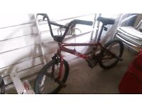 Solid BMX Bike - haro bikes mirra 540