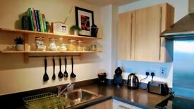 LOVELY TWO BEDROOM APARTMENT NEAR LONDON, WINDSOR & HEATHROW AIRPORT AVAILABLE FOR SHORT STAYS