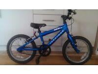MX16 Ridgeback Bike