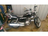 Yamaha ybr 125 custom motorbike learner