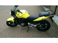 Honda CBF600 5k miles👍 Full Year Mot✔ VGC👍
