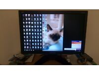 Viewsonic 20.5 inch Widescreen PC Monitor For Sale - £15 or Nearest Offer