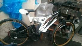 Sabre bike