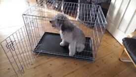 Quality Dog Crate and Canvas Portable Crate/Carrier