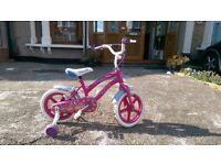 "Polly 14"" Bike"