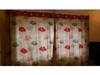 curtains and set of canvas prints from next