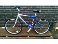 Mountain bike (