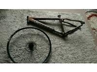 Kona frame /dt swiss front wheel
