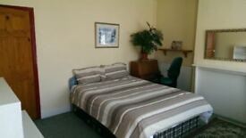 Lovely double room suitable for couple in friendly household