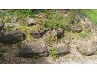 Large rockery boulders approx 25