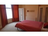 Large Double Bedroom in L15, Near Smithdown Rd, CC