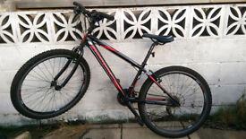 Boys Trailridge Claud Butler Bike