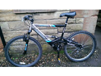 Adult Reebok mountain bike in perfect riding condition